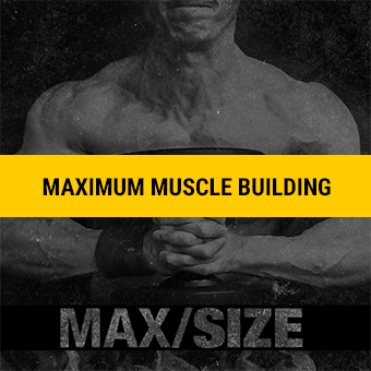 Athlean-X Max Size Program