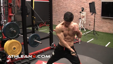 d2 flexion crossover lower chest exercise