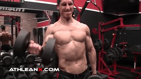 alternating dumbbell biceps curl exercise