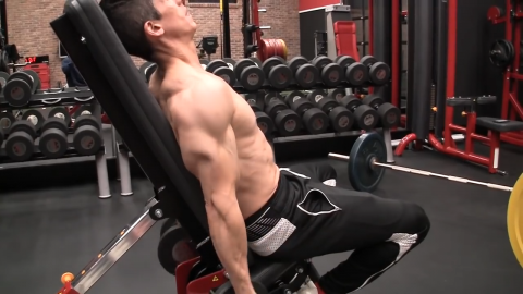 perform an active contraction of the triceps in the incline dumbbell curl