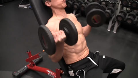incline dumbbell curl strongest biceps contraction at the beginning of the strength curve