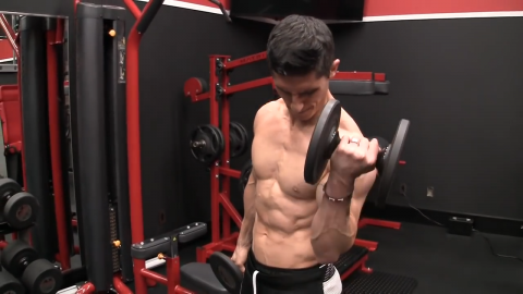 no money curl biceps exercise