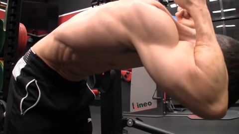 pull the ribcage down and forward in the banded pull down