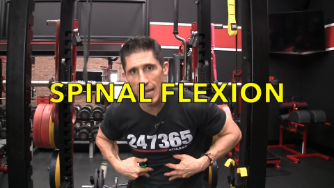 spinal flexion function of the abs