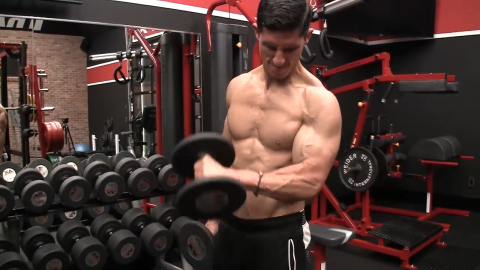 biceps and brachialis share elbow flexion function
