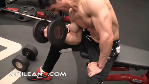 the concentration curl is another curling exercise for the biceps