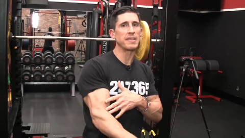 midrange portion of movements are handled by brachialis