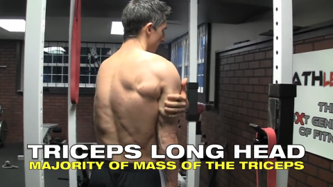 you need to thicken the long head of the triceps for bigger arms