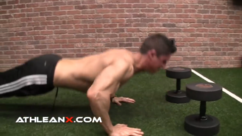 using heavier dumbbells will mean a greater height for your plyo taps