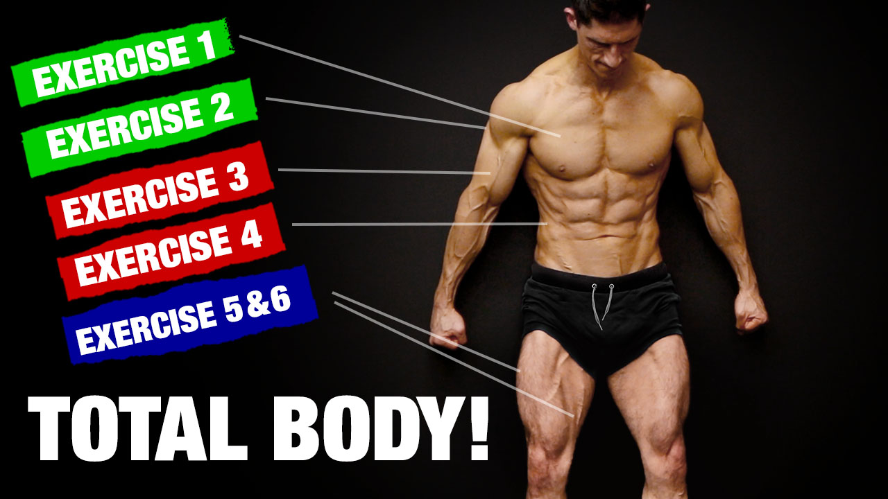 perfect home total body workout