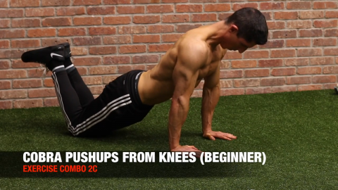 cobra pushups from knees
